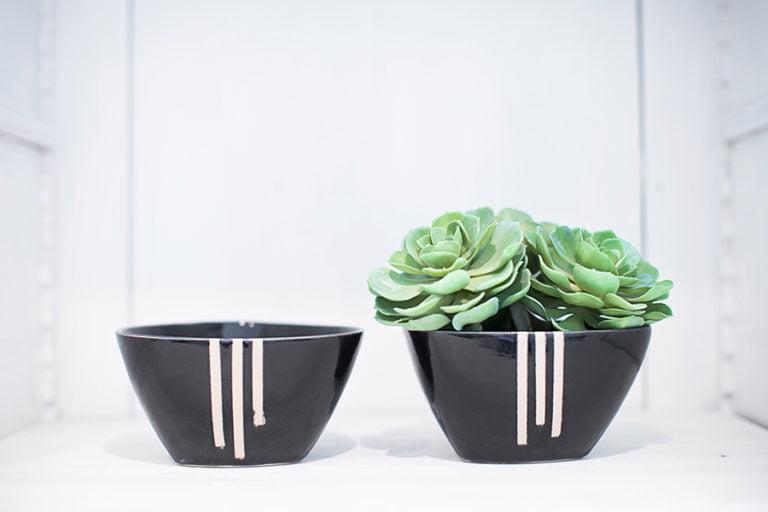 två svarta skålar med vit rand, växter i den ena.